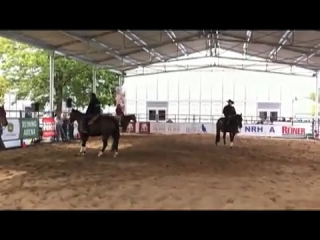 2010 Alltech FEI World Equestrian Games Ride a Reiner